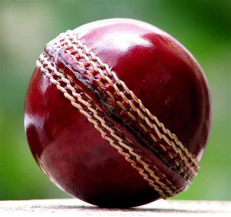 Cricket Images Cricket