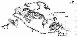 Diagram  Integra Type R Intake Manifold Engine Diagram