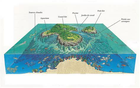 formation cuisine guadeloupe infos sur reserve cousteau guadeloupe carte arts et