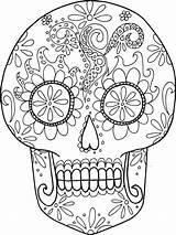 Coloring Skeleton Dead Sheets Skull Little Skulls Sugar Minds Blossoming Sized Adult Pages Skeletons Teachersdojo Paper Grade Sea Turtle sketch template