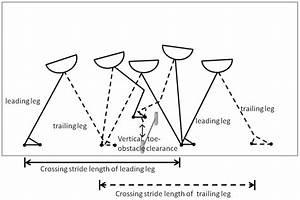 Obstacle crossing parameters. | Download Scientific Diagram