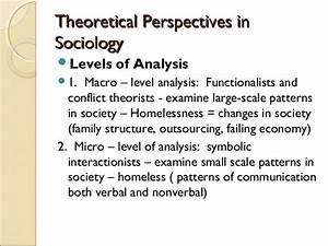 interactionist perspective historical setting in which sociology appeared as a