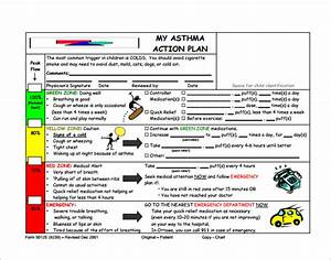 asthma action plan template 13 free sample example With my asthma action plan template