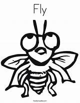 Fly Coloring Ly Pages Flies Outline Printable Getcoloringpages Twistynoodle sketch template