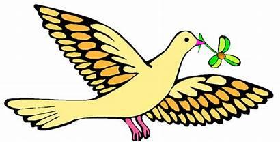 Christian Dove Religion God Faith Noah Faithful