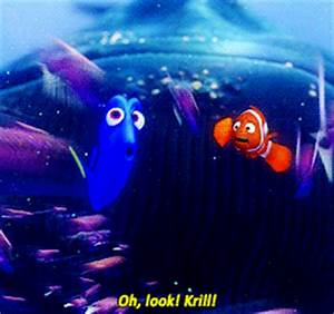 Finding Nemo GIF - Find & Share on GIPHY