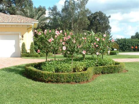 landscaping options florida landscaping ideas for backyard ztil news