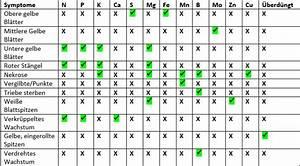 Stickstoffmangel Bei Pflanzen : n hrstoffmangel tabelle ~ Lizthompson.info Haus und Dekorationen