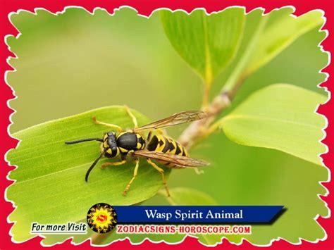 wasp spirit animal meaning symbolism dream
