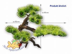 Aquarium Gestaltung Bilder : bonsai klein kunstpflanze gestaltung deko wasserpflanze ~ Lizthompson.info Haus und Dekorationen
