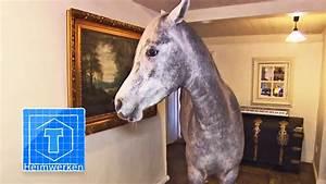 Geldverstecke Im Haus : haus pferd tiere tooltown youtube ~ Watch28wear.com Haus und Dekorationen