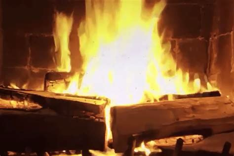 fireplace netflix which netflix fireplace is right for you mel magazine
