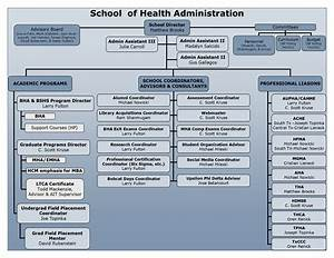 Organizational Wire Diagram   School Of Health