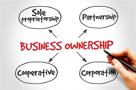 Types Of Business Ownerships Structures