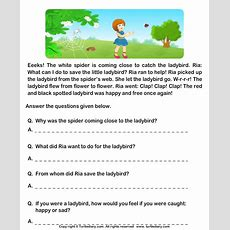 Fill In The Blanks From Comprehension Ria And Ladybird Worksheet  Turtle Diary