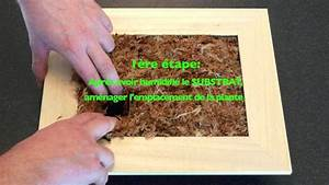 Cadre A Faire Soi Meme : r aliser soi m me un tableau v g tal gardenbox youtube ~ Nature-et-papiers.com Idées de Décoration