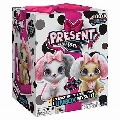 Present Pets Sanborns