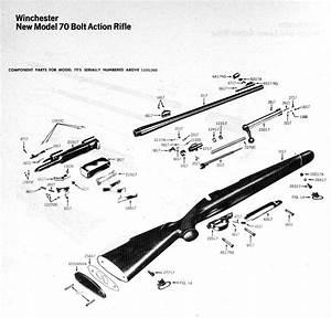 Diagrama De Despiece De Winchester 270 Win Modelo 70