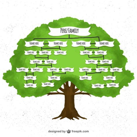 Family Tree Images Watercolor Family Tree Vector Free