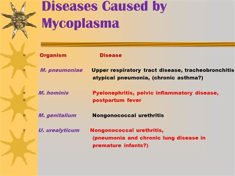 Mycoplasma And Ureaplasma  Ppt Video Online Download