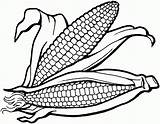Coloring Corn Printable Pages Sheet Popular sketch template