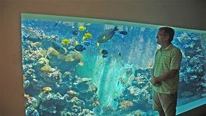Liter Berechnen Aquarium : eli 39 s 30 000 liter reef tank filtration and life support system youtube ~ Themetempest.com Abrechnung