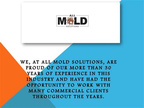 mold removal companies   authorstream