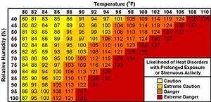 Forecast Graphs