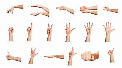 Hand Gestures Gesture Surgery Communication Definition Different