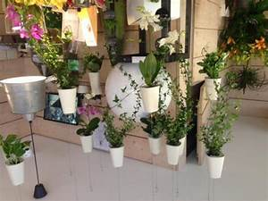 Suspension Pour Plante Interieur : suspension pour orchid es bw87 jornalagora ~ Teatrodelosmanantiales.com Idées de Décoration