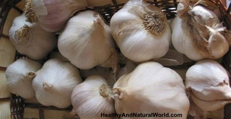 How to Use Garlic to Promote Hair Growth (Research Based)