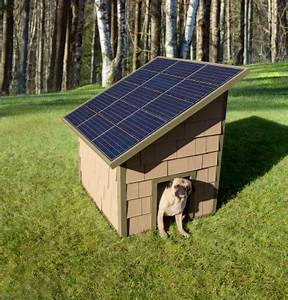 Solar power energy to heat your pet dog house for Solar panel dog house