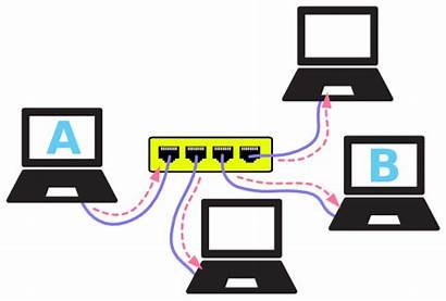 Network Networking Basics Hub Connected Computers Hubs