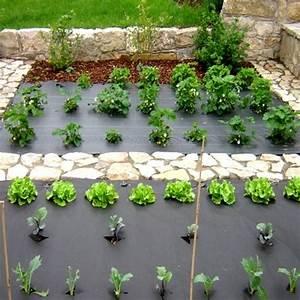 Toile De Jardin : bache de jardin pour plantation toile anti mauvaise herbe closdestreilles ~ Teatrodelosmanantiales.com Idées de Décoration