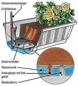 Blumenkästen Mit Bewässerung : blumenk sten mit wasserspeicher anleitung garden garten ~ Lizthompson.info Haus und Dekorationen