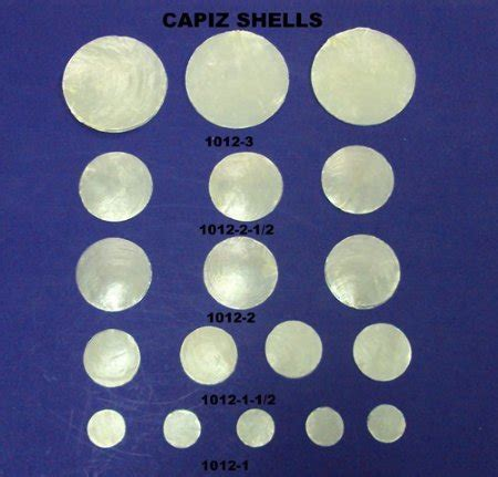 wholesale pearlized white capiz shells