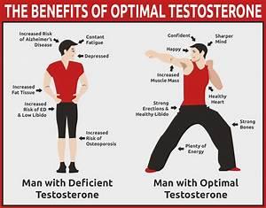 Testosterone Routine  U2014 Thetestosteroneroutine