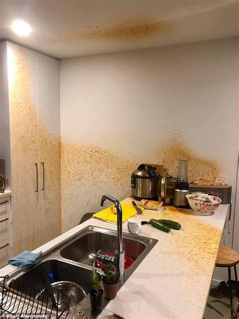 cooker pressure exploded ceiling kitchen aftermath tasmania kirsty walls explodes mixture cupboard mess covering counter showing parts stew beef woman