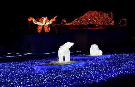 best christmas and holiday light displays around seattle