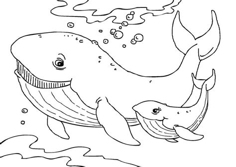 Coloring Whale by Free Printable Whale Coloring Pages For
