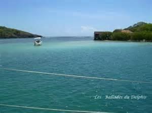 Excursion Catamaran Sainte Luce Martinique by Les Ballades Du Delphis Sainte Luce 2018 Ce Qu Il Faut