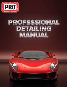 Professional Detailing Manual