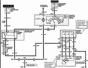2010 Ford Fusion Wiring Diagram Ac Harness Helen L Bee Karin Gillespie 41478 Enotecaombrerosse It