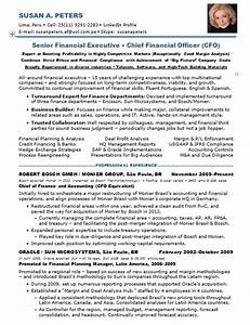 resume samples chief financial officer multi industries With cfo resume template