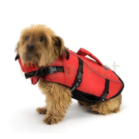 hunde schwimmweste rettungsweste guenstig bei garpet