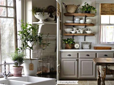 plante cuisine plante aromatique archives page 8 of 15 fleur de