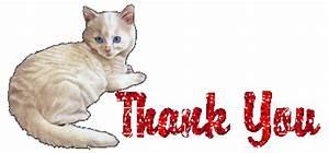 Thank you Graphic Animated Gif - Graphics thank you 932007