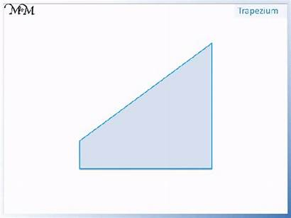 Parallel Sides Lines Shapes Pairs Trapezium Mark