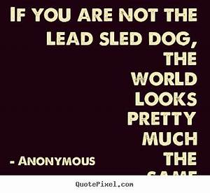 Life Quote Imag... Dog Sledding Quotes