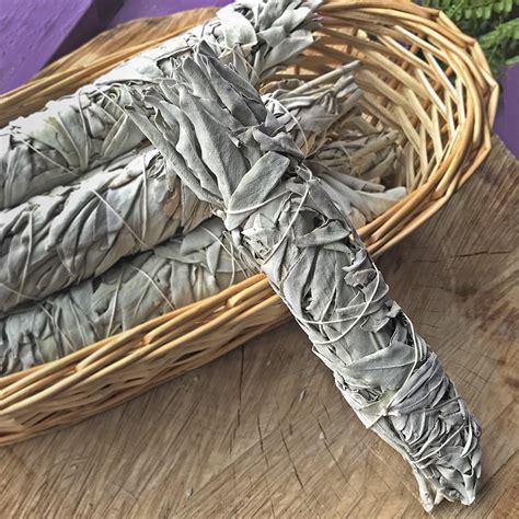 White Sage Bundle at the Dreaming Goddess